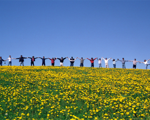 ILI-Halifax Students in Dandelion Field