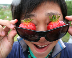 ILI Social Activities Strawberry Picking